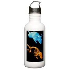 Coloured 3-D CT scans  Water Bottle
