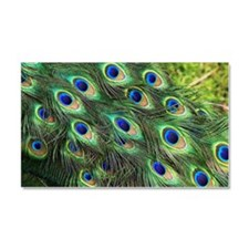Peacock feathers Car Magnet 20 x 12