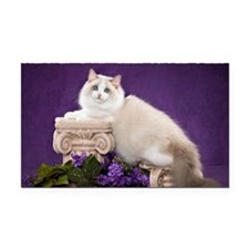 Ragdoll Cat Wall Calendar Rectangle Car Magnet