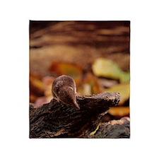 Pygmy shrew Throw Blanket