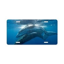 Humpback Whales Aluminum License Plate