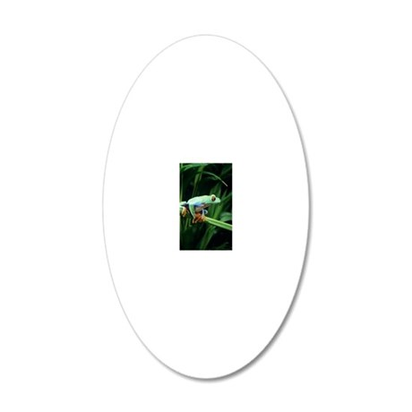 Red-eyed tree frog 20x12 Oval Wall Decal