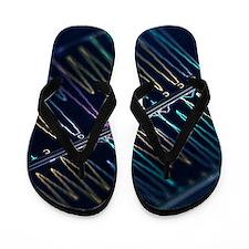 DNA analysis Flip Flops