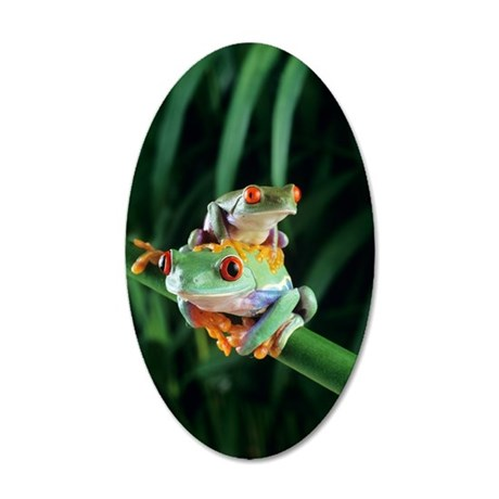 Red-eyed tree frogs 35x21 Oval Wall Decal