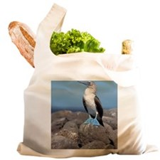 North Seymour Island. Reusable Shopping Bag