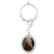 Redwood trees Oval Wine Charm
