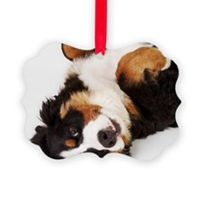 Bernese Mountain Dog Berner Senne Ornament