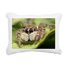 Jumping spider close up Rectangular Canvas Pillow