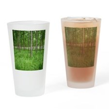 Spring at tree farm Drinking Glass