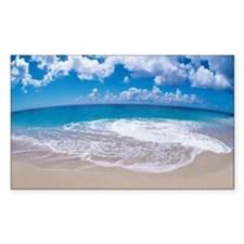 Sea foam on beach fisheye Decal