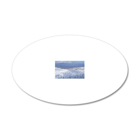 Snow monster 20x12 Oval Wall Decal