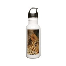 Leopard cub Panthera p Stainless Steel Water Bottle