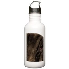 Neapolitan mastiff, si Water Bottle