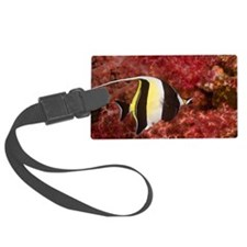 Moorish Idols Zanclus comutus on Luggage Tag