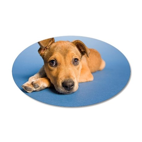 Saddest puppy in whole world 35x21 Oval Wall Decal