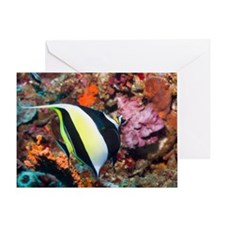 Moorish idol Zanclus comutus on soft Greeting Card