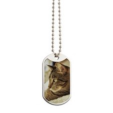 Profile of lounging tabby cat Dog Tags