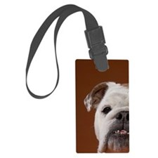 Dog with bracelet on paw Luggage Tag