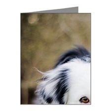 Border Collie in grass Note Cards (Pk of 20)