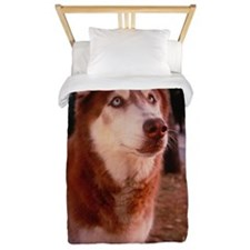 Portrait of Husky Outdoors Twin Duvet