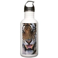 Tiger close-up Panther Water Bottle