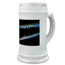 Needlefish with jaws open, close-up Stein