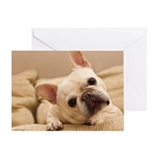 French bulldog. Greeting Card