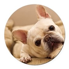 French bulldog. Round Car Magnet