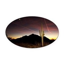 Saguaro cactus at sunset. Oval Car Magnet