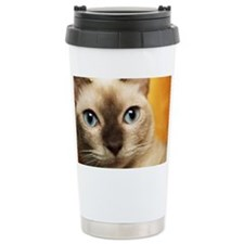 Tonkinese cat, close-up Ceramic Travel Mug