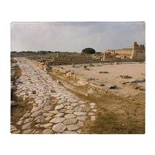 Italy, Puglia, Egnazia, Roman ruins  Throw Blanket