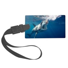 Great white shark arching body a Luggage Tag
