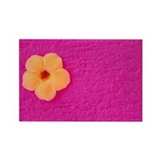 Flower head on pink wall Rectangle Magnet