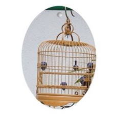 Bamboo bird cages with singing birds Oval Ornament