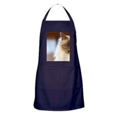 Sacred birman cat with blue eyes sitt Apron (dark)