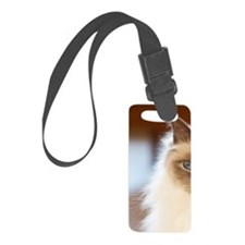 Sacred birman cat with blue eyes Small Luggage Tag