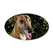 Greyhound dog outdoors Wall Decal