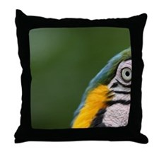 Ecuador, Guayaquil, blue and yellow m Throw Pillow