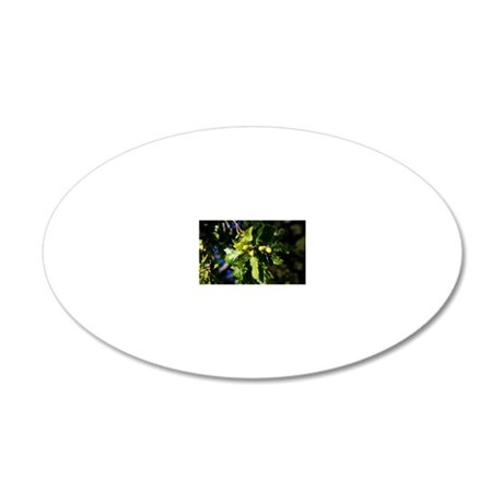 Acorns and leaves, oak tree 20x12 Oval Wall Decal