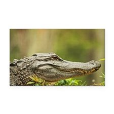 An American alligator Rectangle Car Magnet