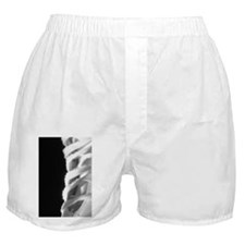 Ice skate Boxer Shorts