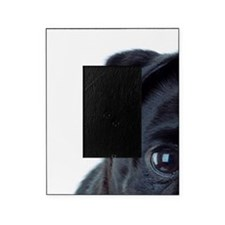 Pug Picture Frame