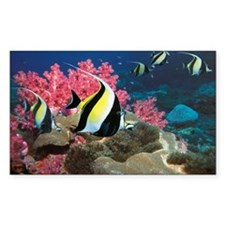 Moorish idol Zanclus comutus o Decal