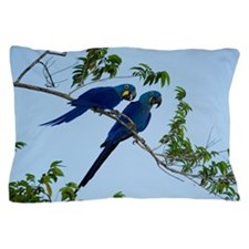 Two hyacinth macaws Anodorhynchus hyac Pillow Case