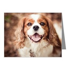 Cavalier King Charles Spanie Note Cards (Pk of 20)