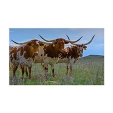 Texas Longhorn cattle, central Ok Wall Decal