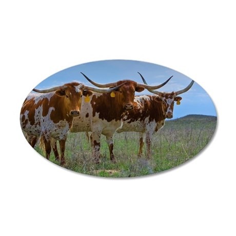 Texas Longhorn cattle, centr 35x21 Oval Wall Decal