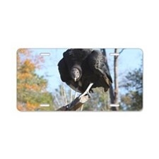 Intense black vulture Aluminum License Plate