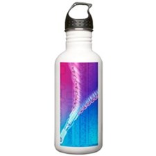 DNA replication Water Bottle
