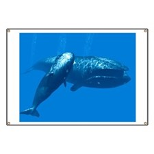 Right whale mother and calf Banner